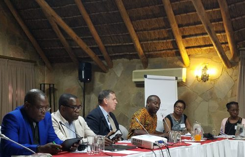 Des stratégies pour un différent type de développement en Afrique