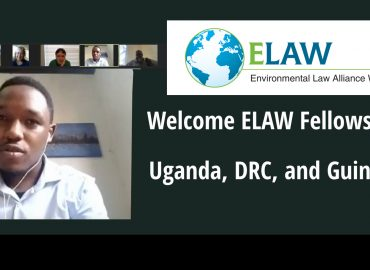 Welcome ELAW Fellows from Uganda, DRC, and Guinea
